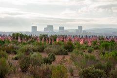 Ετήσιος τομέας της τιμής, Newport Beach, Καλιφόρνια, ΗΠΑ στοκ εικόνες