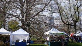 Ετήσιο φεστιβάλ Dogwood σε Fairfield, Κοννέκτικατ στοκ εικόνα