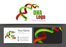 Εταιρικά λογότυπο κορδελλών DNA και πρότυπο σημαδιών επαγγελματικών καρτών ελεύθερη απεικόνιση δικαιώματος