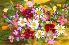 Ετερόκλητο πολύχρωμο applique των ξηρών λουλουδιών Στοκ Φωτογραφία