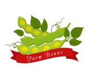Ετικέτα φασολιών σόγιας, λογότυπο Αγροτικό προϊόν, χορτοφάγα τρόφιμα επίσης corel σύρετε το διάνυσμα απεικόνισης Στοκ φωτογραφίες με δικαίωμα ελεύθερης χρήσης