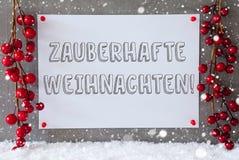 Ετικέτα, Snowflakes, διακόσμηση, μαγικά Χριστούγεννα μέσων Zauberhafte Weihnachten Στοκ Εικόνες