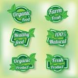 Ετικέτες προϊόντων Ecogreen Στοκ εικόνα με δικαίωμα ελεύθερης χρήσης