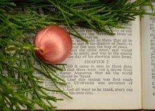 Ευαγγέλιο του Luke, ιστορία Χριστουγέννων Στοκ εικόνα με δικαίωμα ελεύθερης χρήσης