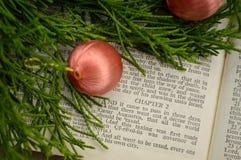 Ευαγγέλιο του Luke, ιστορία Χριστουγέννων Στοκ φωτογραφία με δικαίωμα ελεύθερης χρήσης