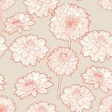 Ευγενές άνευ ραφής floral άσπρο σχέδιο αστέρων διανυσματική απεικόνιση