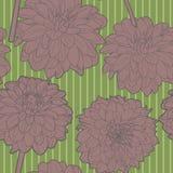Ευγενές άνευ ραφής floral εκλεκτής ποιότητας ιαπωνικό πράσινος-μπεζ σχέδιο με τα asters ελεύθερη απεικόνιση δικαιώματος
