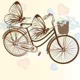 Ευγενές γαμήλιο υπόβαθρο με το ποδήλατο και τις πεταλούδες Στοκ Φωτογραφίες