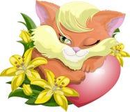 Ευγενές γατάκι Στοκ Εικόνα