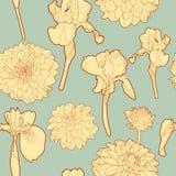 Ευγενές ηλιόλουστο floral σχέδιο φθινοπώρου διανυσματική απεικόνιση