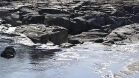 Ευγενής ευρύς ποταμός απόθεμα βίντεο