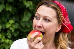 Ευγνώμον δάγκωμα σε ένα μήλο Στοκ φωτογραφίες με δικαίωμα ελεύθερης χρήσης