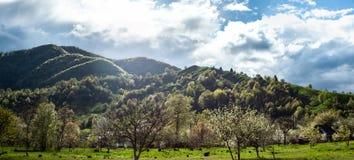 Ευδιάκριτο τοπίο με την πράσινους χλόη, τους λόφους και τα δέντρα, ηλιόλουστος καιρός, νεφελώδης ουρανός στοκ εικόνα με δικαίωμα ελεύθερης χρήσης
