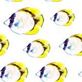ευθυγραμμισμένο butterflyfish σχέδιο Στοκ εικόνα με δικαίωμα ελεύθερης χρήσης