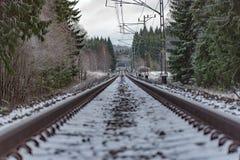 Ευθύς σιδηρόδρομος μέσω ενός σουηδικού δάσους το Δεκέμβριο στοκ εικόνες