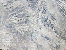 λευκό δέντρων διακοσμήσ&epsil Στοκ φωτογραφίες με δικαίωμα ελεύθερης χρήσης