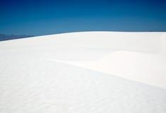 λευκό αμμόλοφων στοκ εικόνα