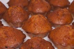 λευκό ανασκόπησης cupcakes Στοκ φωτογραφία με δικαίωμα ελεύθερης χρήσης