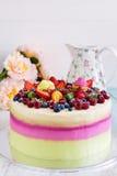 λευκό απομόνωσης καρπού κέικ Στοκ Εικόνα