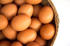 λευκό αυγών καλαθιών ανα Στοκ Φωτογραφία