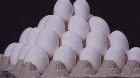 λευκό αυγών κοτόπουλου απόθεμα βίντεο