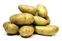 λευκό βολβών πατατών μονοπατιών ψαλιδίσματος ανασκόπησης Στοκ εικόνα με δικαίωμα ελεύθερης χρήσης