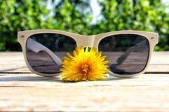 λευκό γυαλιών ηλίου Στοκ Φωτογραφίες