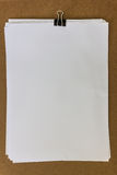 λευκό εγγράφου συνδετήρων Στοκ Φωτογραφίες