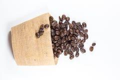 λευκό καφέ φασολιών ανασ& Στοκ Φωτογραφία