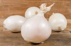 λευκό κρεμμυδιών στοκ εικόνες με δικαίωμα ελεύθερης χρήσης
