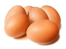 λευκό ομάδων εστίασης αυγών αυγών Στοκ εικόνα με δικαίωμα ελεύθερης χρήσης