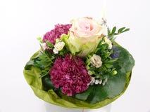 λευκό λουλουδιών ανα&sigma Στοκ φωτογραφίες με δικαίωμα ελεύθερης χρήσης