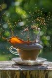 λευκό παφλασμών έκχυσης καφέ ανασκόπησης Στοκ εικόνες με δικαίωμα ελεύθερης χρήσης