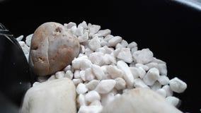 λευκό πετρών Στοκ Εικόνα