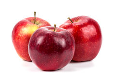 λευκό σειράς φωτογραφιών ανασκόπησης μήλων Στοκ εικόνες με δικαίωμα ελεύθερης χρήσης