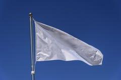 λευκό σημαιών Στοκ Εικόνες