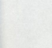 λευκό σύστασης εγγράφο&ups Στοκ Εικόνες