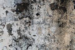 λευκό τοίχων Στοκ φωτογραφίες με δικαίωμα ελεύθερης χρήσης