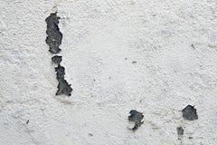 λευκό τοίχων Στοκ εικόνες με δικαίωμα ελεύθερης χρήσης