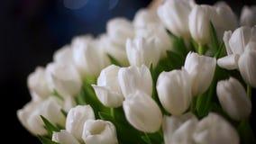 λευκό τουλιπών καλαθιών Στο υπόβαθρο είναι ένα όμορφο bokeh απόθεμα βίντεο