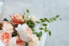 λευκό τριαντάφυλλων ανα&s Στοκ φωτογραφίες με δικαίωμα ελεύθερης χρήσης