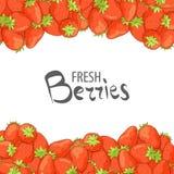 λευκό φραουλών ανασκόπη&sig απεικόνιση αποθεμάτων