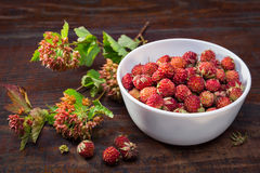 λευκό φραουλών φλυτζαν&i Στοκ εικόνα με δικαίωμα ελεύθερης χρήσης