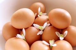 Ευπρόσδεκτη άνοιξη ευτυχές Πάσχα Snowdrops και αυγά στο άσπρο υπόβαθρο η έννοια Πάσχα απομόνωσε το λευκό ανασκόπηση που θολώνεται Στοκ εικόνες με δικαίωμα ελεύθερης χρήσης