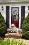 Ευπρόσδεκτο σπίτι (μπροστινή πόρτα w/Dog) Στοκ Εικόνες