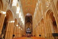 Ευρεία άποψη γωνίας του εσωτερικού του καθεδρικού ναού με τις αψίδες και του χρωματισμένου ανώτατου ορίου του σηκού στοκ εικόνες με δικαίωμα ελεύθερης χρήσης