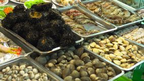 Ευρεία επιλογή των θαλασσινών στα ενυδρεία στην αγορά νύχτας στο Βιετνάμ Αγορά ψαριών Rawai Άποψη κινηματογραφήσεων σε πρώτο πλάν απόθεμα βίντεο