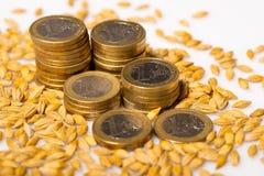 Ευρο- νομίσματα με τους σπόρους Στοκ Εικόνες