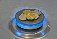 Ευρο- νομίσματα σε ένα μπλε αέριο φλογών Στοκ εικόνα με δικαίωμα ελεύθερης χρήσης