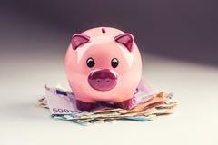 Ευρο- ευρο- νόμισμα τραπεζογραμματίων χρημάτων ευρο- και piggy τράπεζα Στοκ Εικόνα